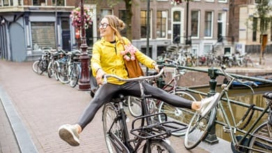 Why study in the Netherlands?