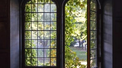 5 great reasons to study at a US liberal arts college