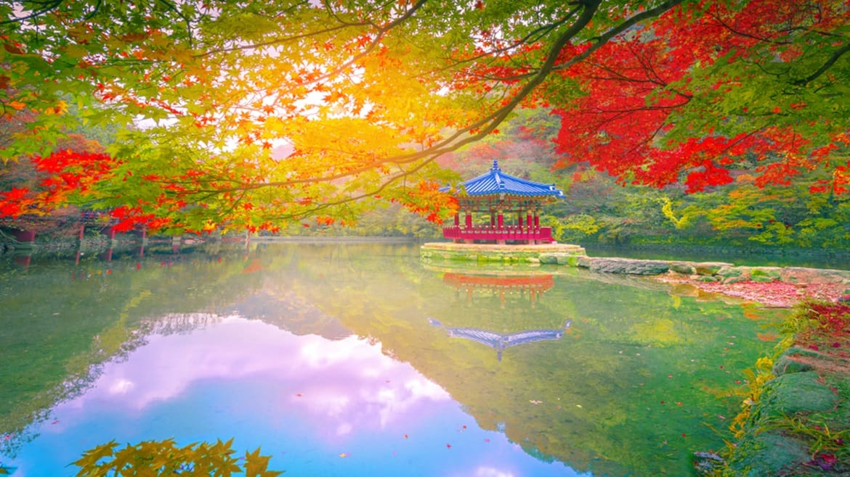 Study in Japan: preparing to apply