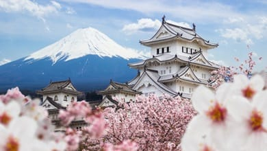 Why study in Japan?