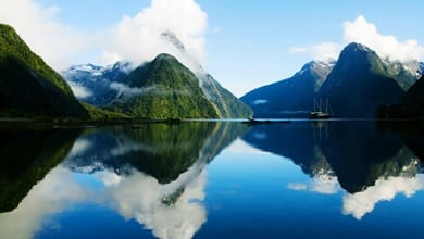 Study in New Zealand: Making an application