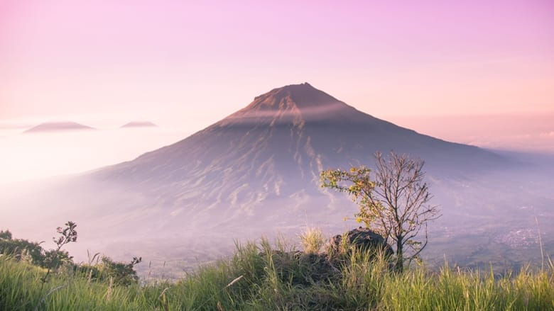 Explore environmental sciences and volcanology with the University of Leicester